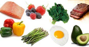 metabolism food