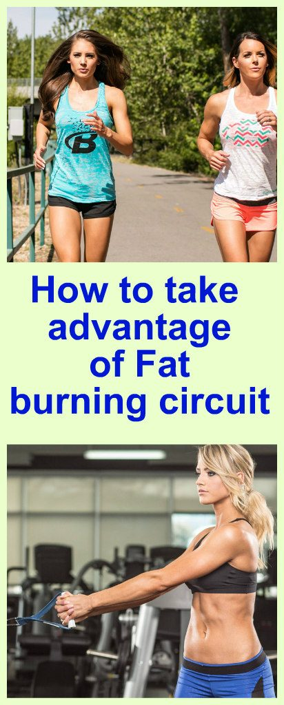 how-to-take-advantage-of-fat-burning-circuit-new1