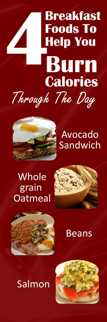 4-breakfast-foods-to-help-you-burn-calories-through-the-day